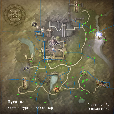 Карта ресурсов Лес Браккар - Пуганка